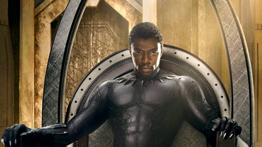 Black Panther Hero
